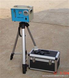 恒流粉尘采样器DS-31C