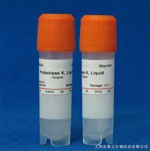 rKOD DNA Polymerase