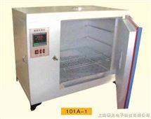 101-A系列鼓风干燥箱