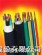 安徽聚氯乙烯绝缘电线