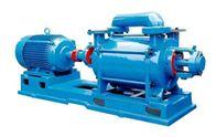 雙級水環式真空泵