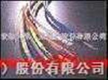 超五类4对阻水数据电缆