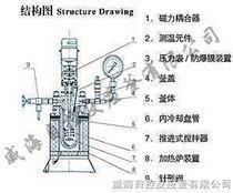 WDF型實驗室磁力高壓反應釜
