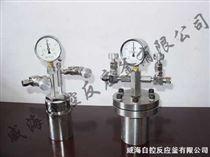 WF微型加氫反應釜