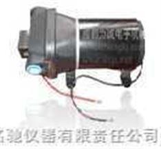 微型自吸水泵