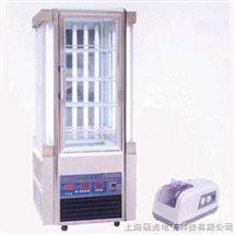 250IC型人工气候箱(5-50℃)