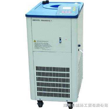 DLSB-5L/-10℃ 5L/-20℃低温冷却液循环泵
