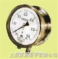 不锈钢差压表CPY-100