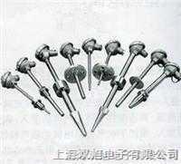 化工专用热电偶WRE-001