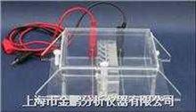 RDY-HS1RDY-HS1蛋白回收电泳仪