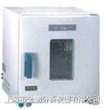 9003B-1系列9003B-1系列电热鼓风干燥箱