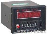 SKX-1B电子计数控制器|SKX-1B|