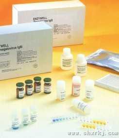 人抗神经元核抗体2型/抗Ri抗体(ANNA-2/Ri)ELISA试剂盒