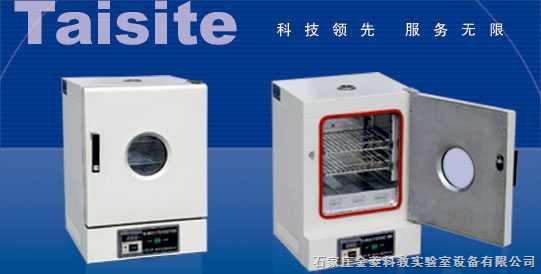 202-00ab 台式电热恒温干燥箱