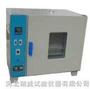 干燥箱 电热恒温鼓风干燥箱