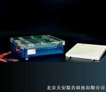 等电聚焦多用途电泳仪(槽)