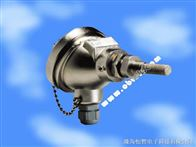 Transmet IS油气田气矿天然气在线露点仪