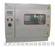 TA-1A电热鼓风干燥箱