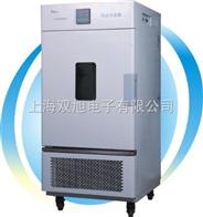 BPS250CBBPS-250CB恒温恒湿箱(高档型)