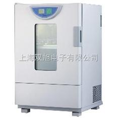 BHO402A老化试验箱