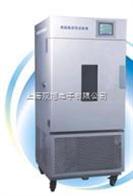 LHH-250GSPLHH-250GSD综合药品稳定性试验箱