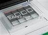11684809910roche原装正品 细胞凋亡检测试剂盒AP法 现货 上海索莱宝生物科技
