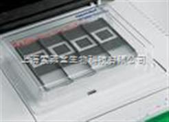 roche原装正品 细胞凋亡检测试剂盒AP法 现货 上海索莱宝生物科技