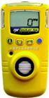BW GAXT-H气体检测仪