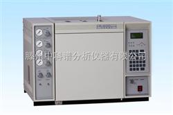 GC-2010单氢火焰型气相色谱仪