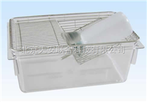全透明小白鼠笼  透明小白鼠笼 带饮水瓶小白鼠笼