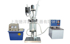 DY-5L双层玻璃反应釜