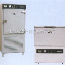 DW-25型(卧式)立式冷冻试验箱