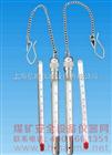 矿用温度计(铜套)|WS-2 |铜套式矿山温度计