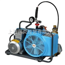 BC163099B巴固BC163099B 电动充气泵
