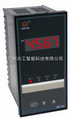 WP-S801-02-23-N数显表WP-S801-02-23-N
