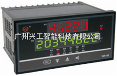 WP-L801-02-A-HL-P流量积算仪