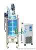 BD80-100L双层玻璃反应釜