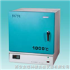 SX2-4-10TA箱式电阻炉