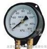 HAD-102双针压力表 压力测量仪表