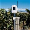 DAVIS6345无线叶面和土壤温湿度控制台/监测仪