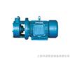 W型W型单级直连旋涡泵