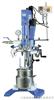 LR2000P型實驗室反應釜(LR 2000 P)