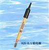 DJS-0.1鉑電極