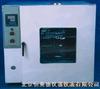 HK-DHG电热鼓风恒温干燥箱 恒温干燥箱 干燥箱