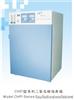 CHP型二氧化碳培养箱