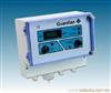 MS-Guardian Plus在线甲烷分析仪 甲烷分析仪