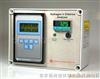 MS-KK650在线型微电脑氢气+氯气分析仪 MS-KK650