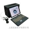 布氏测量系统THI100