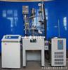 TF-(1-100l)中小试多功能反应器
