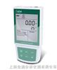 溶解氧测定仪LIDA821